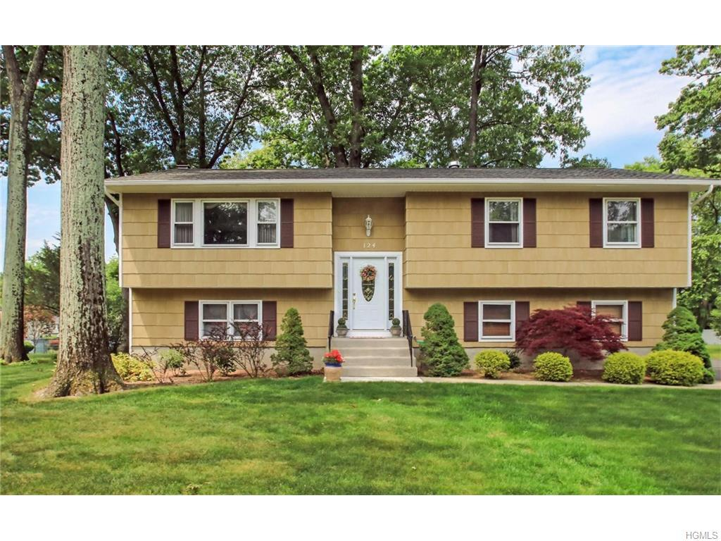 124 Gatto Lane, Pearl River, NY 10965 (MLS #4623630) :: William Raveis Legends Realty Group