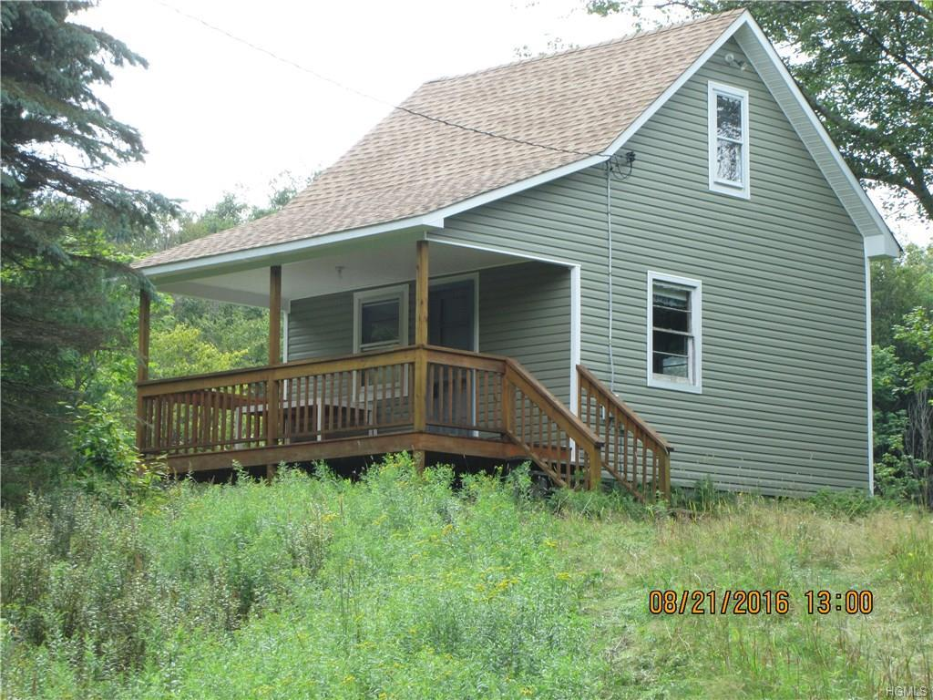 38 Porcupine Road, Grahamsville, NY 12740 (MLS #4637545) :: William Raveis Legends Realty Group