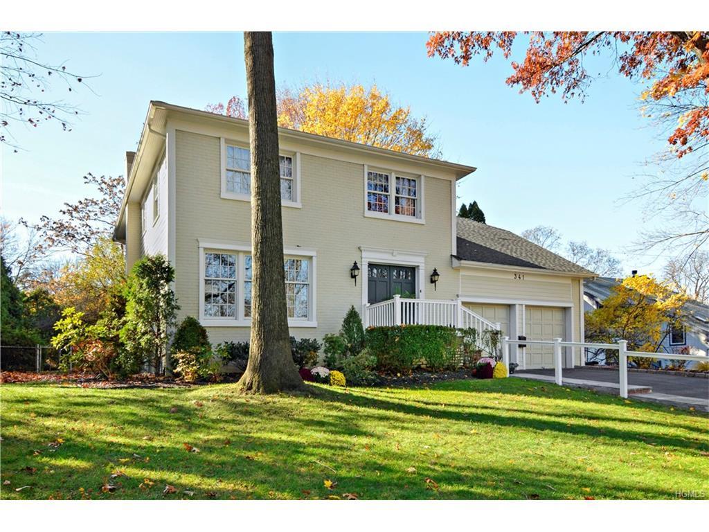 341 Orienta Avenue, Mamaroneck, NY 10543 (MLS #4653088) :: William Raveis Legends Realty Group