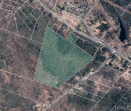 76 Milk Road, Greenfield Park, NY 12435 (MLS #4801190) :: Mark Boyland Real Estate Team