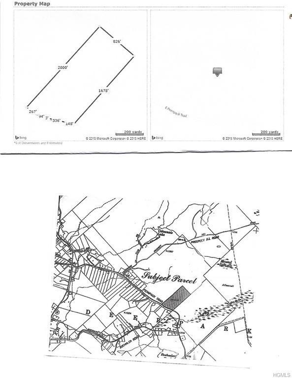 664 Peenpack Trail, Huguenot, NY 12780 (MLS #4805538) :: Mark Boyland Real Estate Team