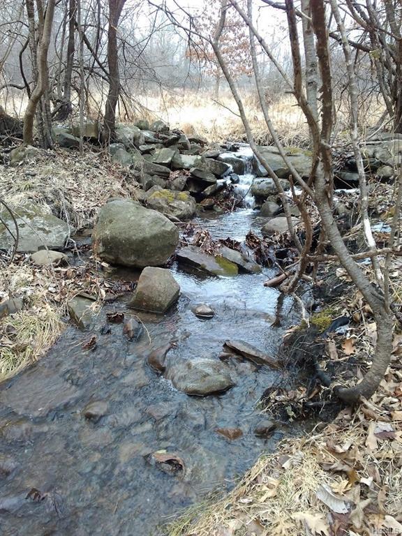 Ridge Road, Blooming Grove, NY 10914 (MLS #4806149) :: William Raveis Baer & McIntosh