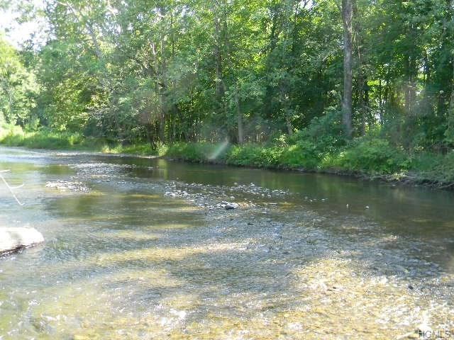 Ten Mile River Road, Dover Plains, NY 12522 (MLS #4806912) :: Mark Boyland Real Estate Team