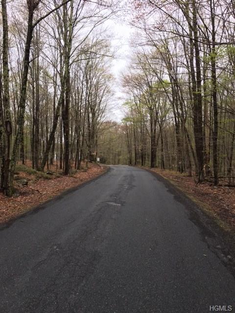 Starlight Road, Monticello, NY 12701 (MLS #4807186) :: Mark Boyland Real Estate Team