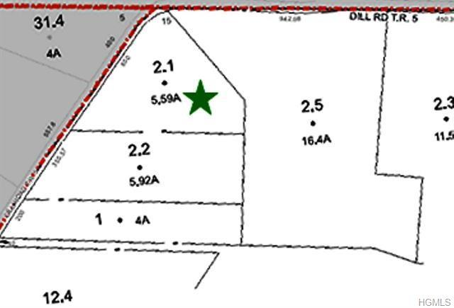 Dill Road, Forestburgh, NY 12777 (MLS #4807829) :: Mark Boyland Real Estate Team