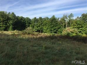 2 El Dorado Trail, Chester, NY 10918 (MLS #4808410) :: Mark Boyland Real Estate Team