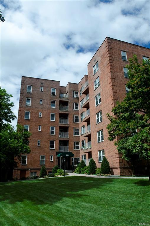565 Broadway 3E, Hastings-On-Hudson, NY 10706 (MLS #4811272) :: Mark Boyland Real Estate Team