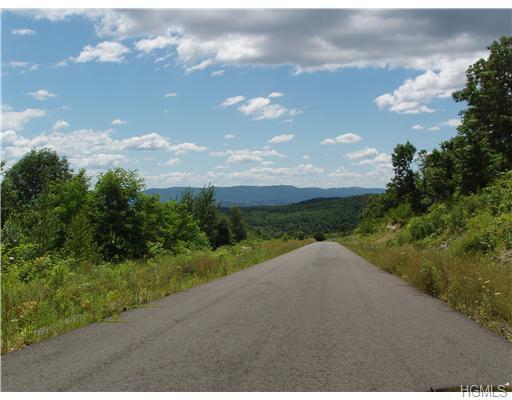 1-17 Truncali Road, Marlboro, NY 12542 (MLS #4813034) :: William Raveis Legends Realty Group