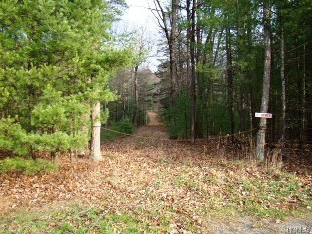Route 42, Forestburgh, NY 12777 (MLS #4813650) :: Mark Boyland Real Estate Team