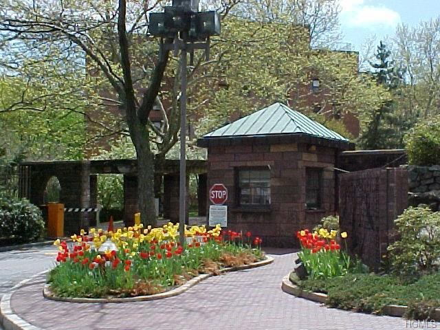 104 Pearsall Drive 3F, Mount Vernon, NY 10552 (MLS #4813813) :: Mark Boyland Real Estate Team