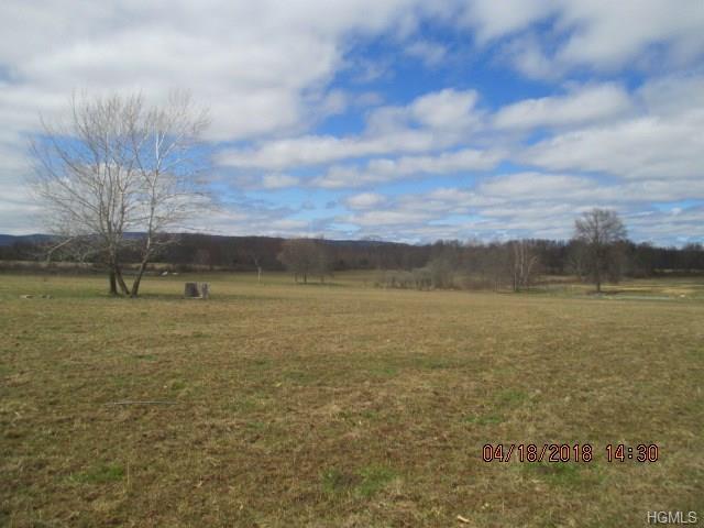 Long Lane, Wallkill, NY 12589 (MLS #4816563) :: Mark Boyland Real Estate Team