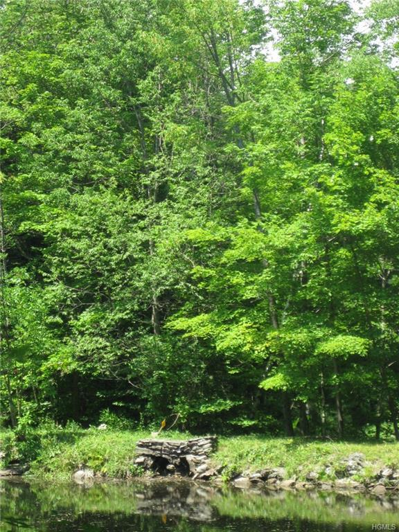 Stonewall Road, Call Listing Agent, NY 12017 (MLS #4817275) :: Stevens Realty Group