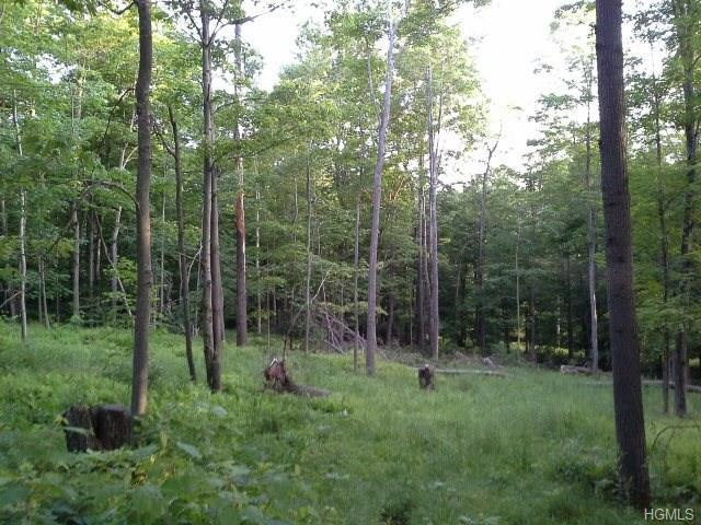 Red Hill Road, Claryville, NY 12725 (MLS #4818182) :: Mark Boyland Real Estate Team