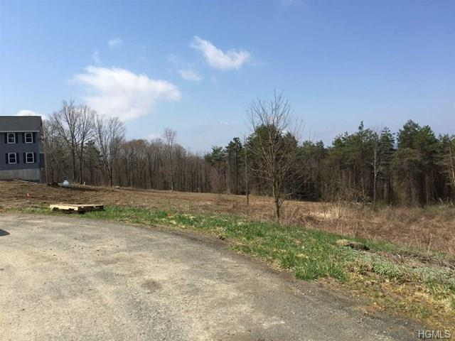 Upper Meadows Drive, Staatsburg, NY 12580 (MLS #4820386) :: William Raveis Legends Realty Group
