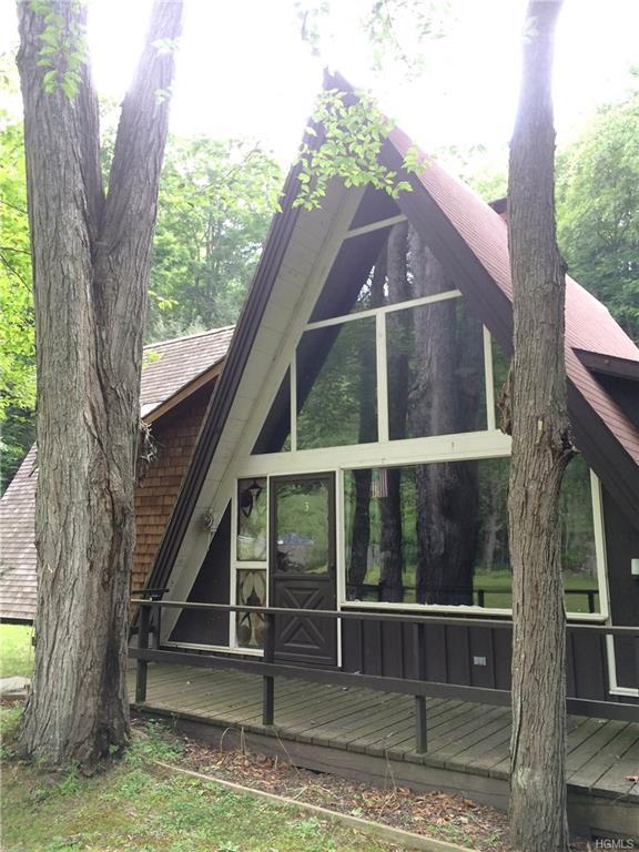 3 Forest Park Place, Sparrowbush, NY 12780 (MLS #4821567) :: Stevens Realty Group