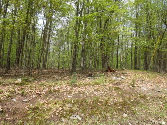 Lake Joseph, Forestburgh, NY 12777 (MLS #4822303) :: Mark Boyland Real Estate Team