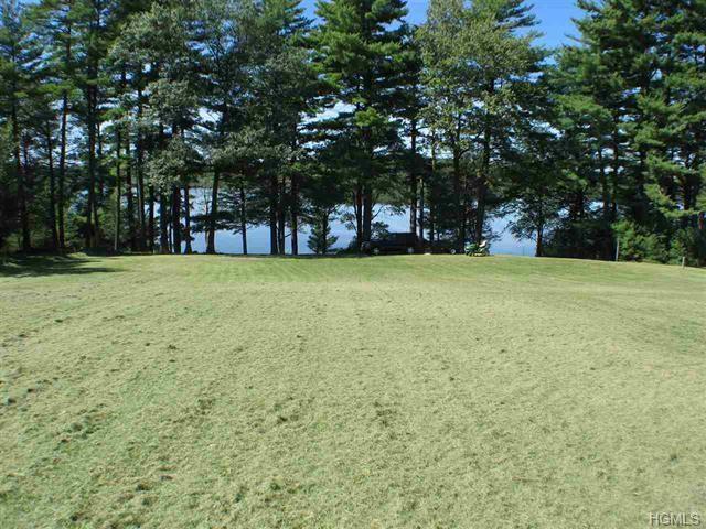 33 Summer Lake Drive, Highland Lake, NY 12743 (MLS #4822612) :: Stevens Realty Group