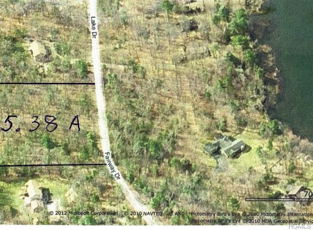 Lake Drive, Highland Lake, NY 12743 (MLS #4822613) :: Stevens Realty Group