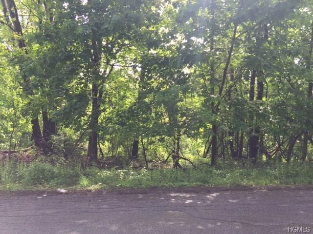 16 Brookside Road, Mahopac, NY 10541 (MLS #4822910) :: Mark Boyland Real Estate Team