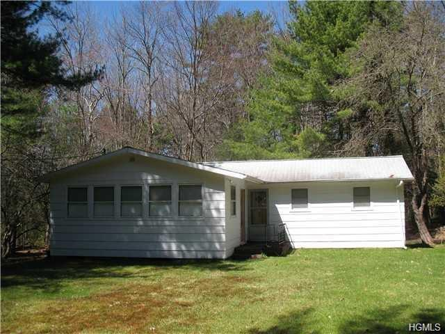 696 Mohican Lake Road, Glen Spey, NY 12737 (MLS #4823063) :: Stevens Realty Group