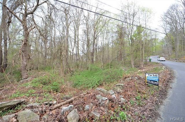 517 Hosner Mountain Road, Stormville, NY 12582 (MLS #4823503) :: Mark Boyland Real Estate Team