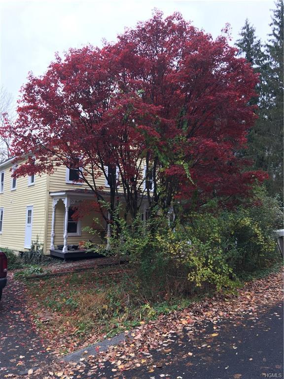 520 Cedar Street, Kingston, NY 12401 (MLS #4826837) :: Mark Seiden Real Estate Team