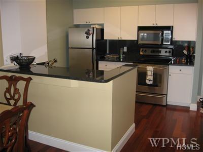 100 New Roc City Place #307, New Rochelle, NY 10801 (MLS #4827700) :: William Raveis Baer & McIntosh