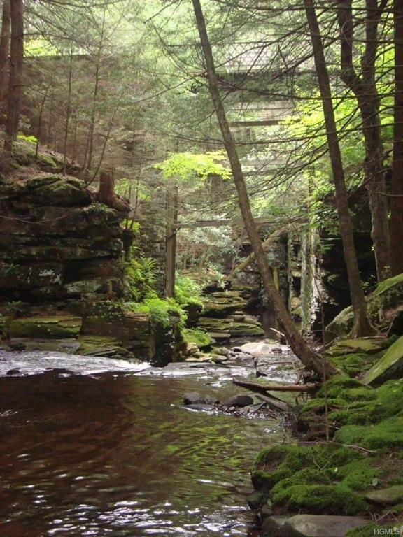 Main Black Forest Road, Glen Spey, NY 12737 (MLS #4831183) :: Stevens Realty Group