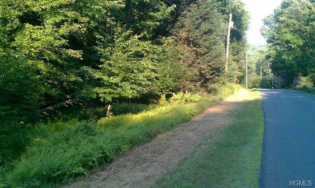 Forest Road, Grahamsville, NY 12740 (MLS #4833218) :: Michael Edmond Team at Keller Williams NY Realty