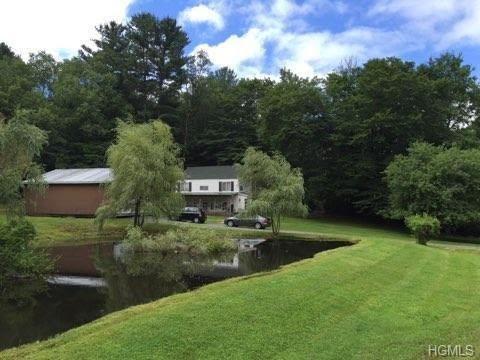 4506 Nys Hwy 55, Swan Lake, NY 12783 (MLS #4833280) :: Stevens Realty Group