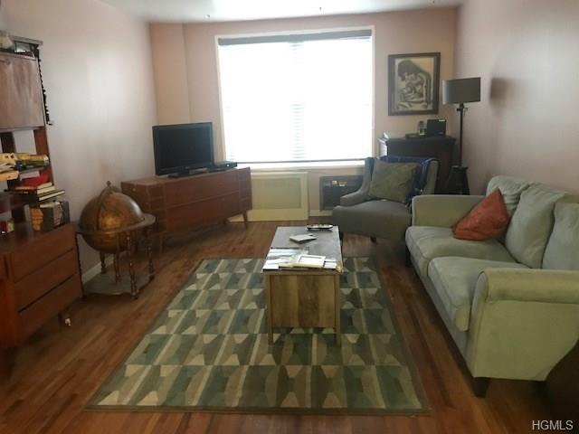 3215 Olinville Avenue 4B, Bronx, NY 10407 (MLS #4834773) :: Mark Boyland Real Estate Team