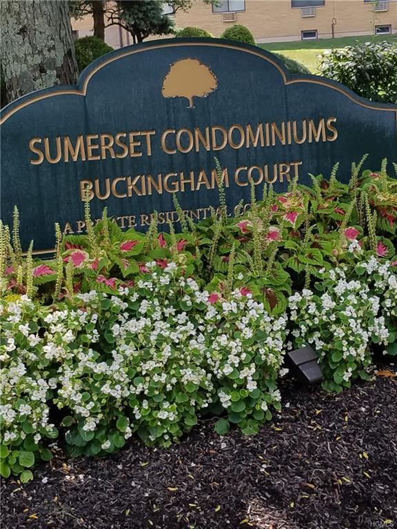 36 Buckingham Court, Pomona, NY 10970 (MLS #4841062) :: Mark Boyland Real Estate Team