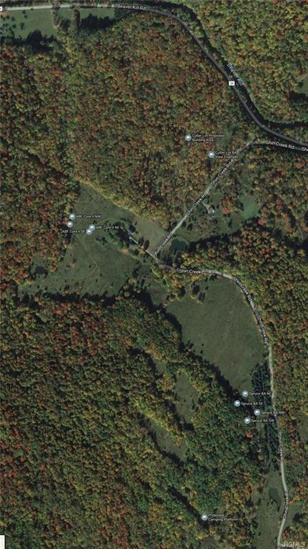 Shin Creek Road, Livingston Manor, NY 12758 (MLS #4841770) :: Stevens Realty Group