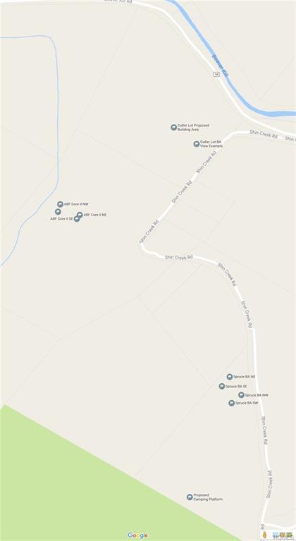 A Shin Creek Road, Livingston Manor, NY 12758 (MLS #4842272) :: Stevens Realty Group