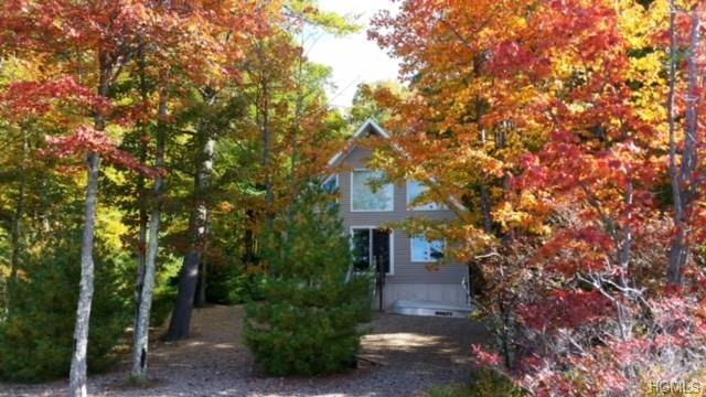 458 N Shore Drive, Wurtsboro, NY 12790 (MLS #4842348) :: Stevens Realty Group