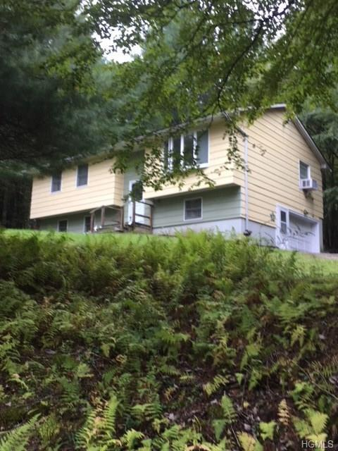5511 State Route 52, Kenoza Lake, NY 12750 (MLS #4845444) :: Mark Seiden Real Estate Team