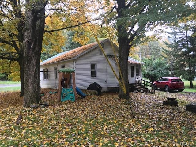 425 Main Street, Grahamsville, NY 12740 (MLS #4846947) :: Mark Seiden Real Estate Team