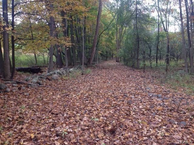 Purgatory Road, Blooming Grove, NY 10914 (MLS #4848940) :: William Raveis Baer & McIntosh