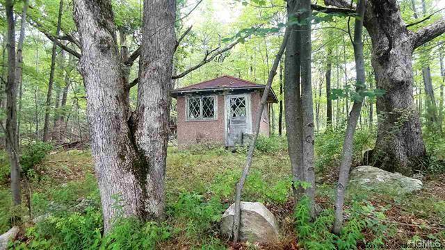 Inn Road, Cragsmoor, NY 12420 (MLS #4849667) :: Mark Seiden Real Estate Team