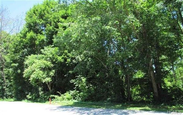 15 Grove Street, Harriman, NY 10949 (MLS #4850746) :: Mark Seiden Real Estate Team