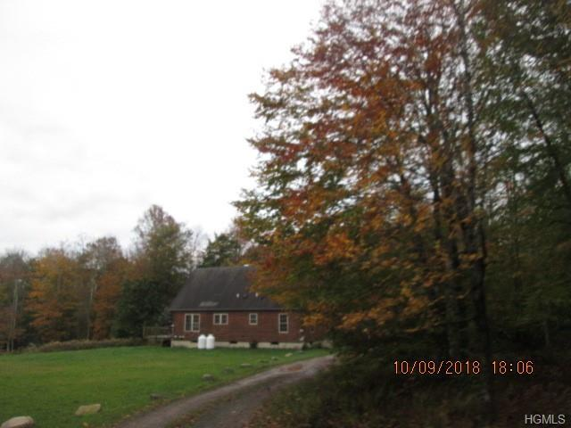 15 White Tail Crossing, Livingston Manor, NY 12758 (MLS #4852872) :: Mark Seiden Real Estate Team