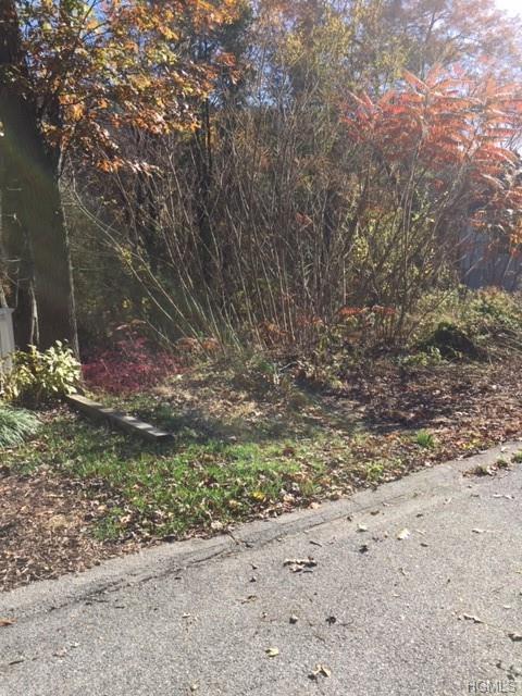 58 Wharton Drive, Cortlandt Manor, NY 10567 (MLS #4853918) :: Mark Seiden Real Estate Team