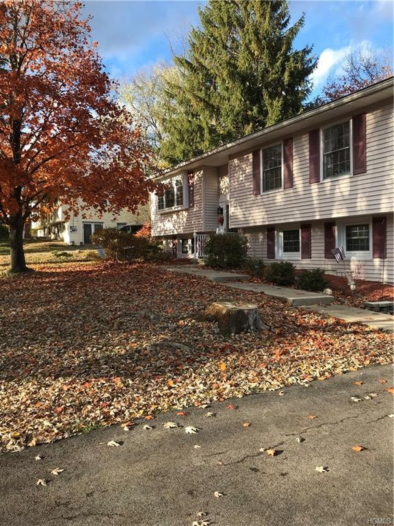 14 Lynmore Avenue, Salisbury Mills, NY 12577 (MLS #4854223) :: Mark Boyland Real Estate Team
