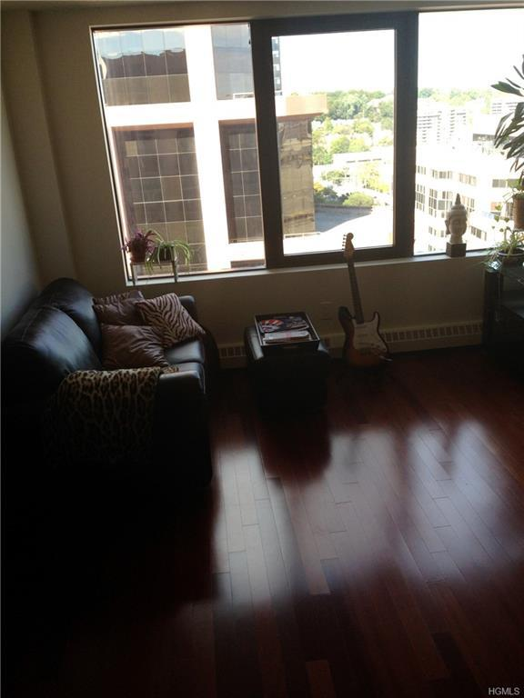 4 Martine Avenue #1519, White Plains, NY 10606 (MLS #4855356) :: William Raveis Baer & McIntosh