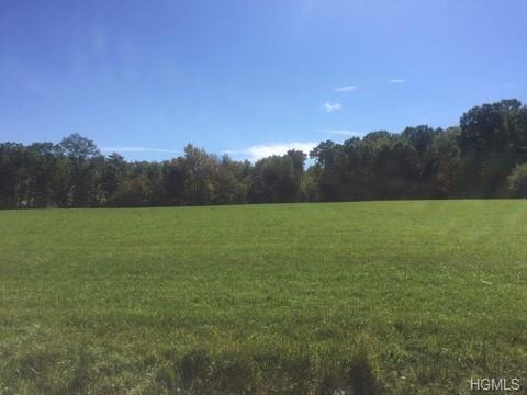 Lot #1 Mt. Salem Road, Port Jervis, NY 12771 (MLS #4900508) :: Mark Boyland Real Estate Team