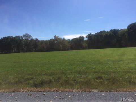 Lot #2 Mt. Salem Road, Port Jervis, NY 12771 (MLS #4900509) :: Mark Boyland Real Estate Team