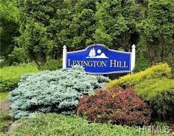 2 Lexington Hill #11, Harriman, NY 10926 (MLS #4902327) :: Mark Seiden Real Estate Team