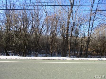 Eatontown Road, Middletown, NY 10940 (MLS #4904133) :: Mark Boyland Real Estate Team