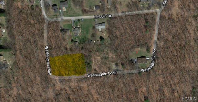 21 Washington Loop, Plattekill, NY 12568 (MLS #4904503) :: Mark Boyland Real Estate Team