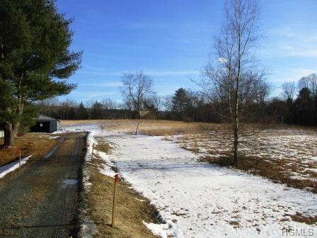 1356 209, Cuddebackville, NY 12721 (MLS #4906366) :: Shares of New York